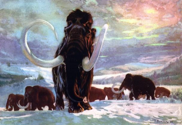 Зденек Буриан. Шерстистый мамонт