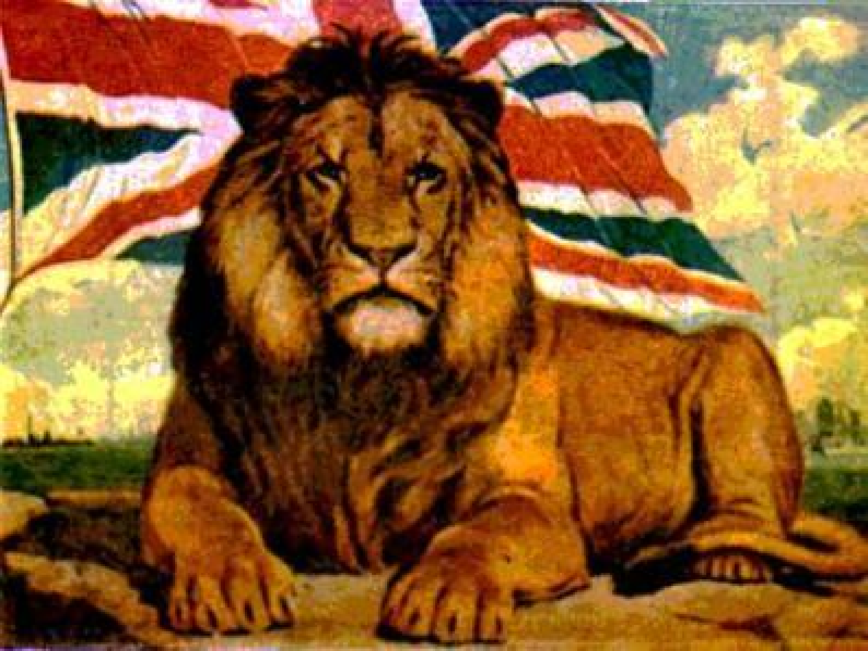 Pictures of british lions