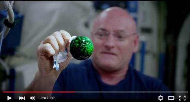 NASA показало необычный эксперимент на борту МКС