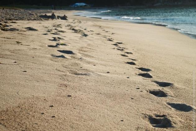 Следы на берегу.