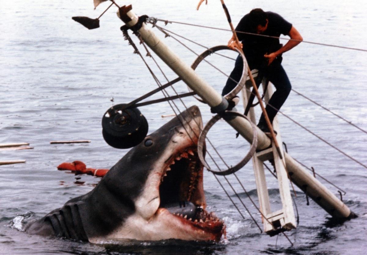 обозначения физических чем можно отпугнуть акулу от лодки для
