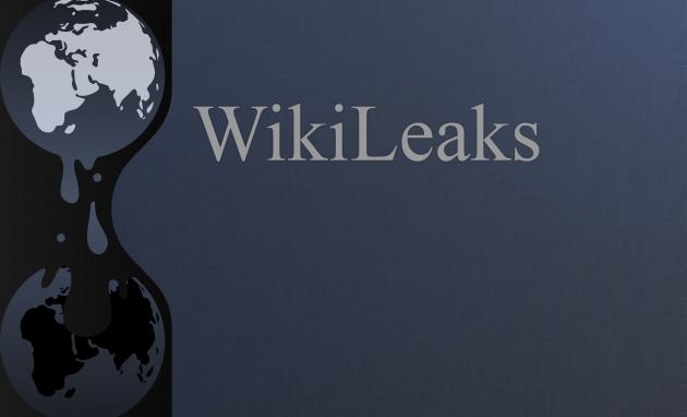 WikiLieaks: Эрдоган лично отдал приказ об атаке на российский самолет