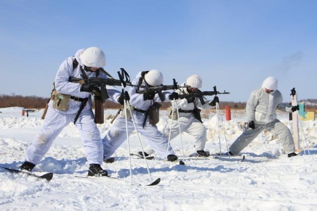 Арктические войска России
