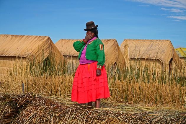 В Перу протестуют против приватизации питьевой воды