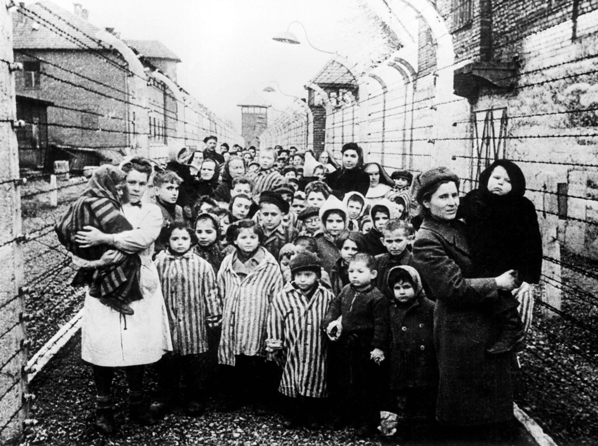Портреты бывших заключённых Освенцима к 70-летию освобождения
