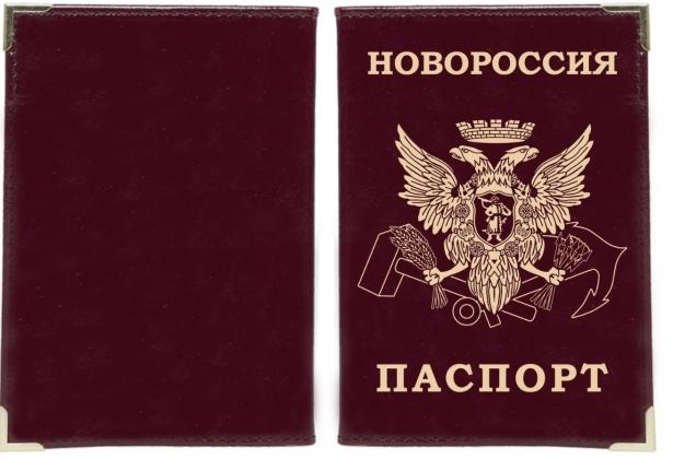 Глава ДНР первым получил паспорт республики, Россия признает документ