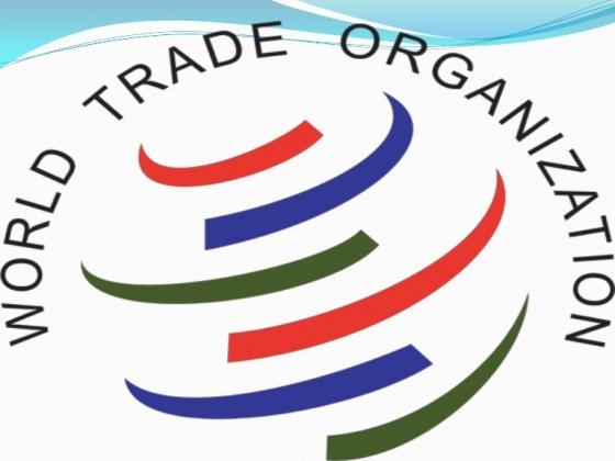 Белоруссия хочет в ВТО, чтобы жаловаться на Россию?