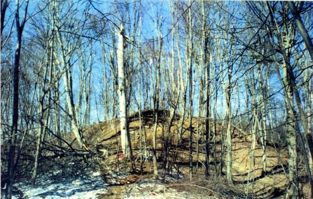 Высота 776.0 (фото 3 марта 2000 года)