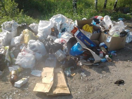 В Ярославской области появится единый оператор по обращению с мусором