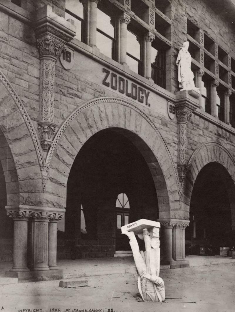 Памятник Луи Агассису в Стендфордском университете после землетрясения . 1906