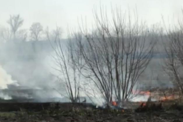 Пример неконтролируемого травяного пала в Егорьевском районе Алтайского края
