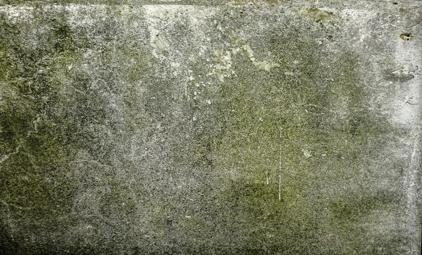 Плесень бетона купить алмазную коронку по бетону 68