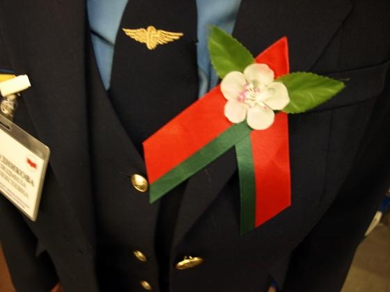 Утверждённая в 2015 году официальная символика Дня Победы на униформе сотрудников Минского метрополитена