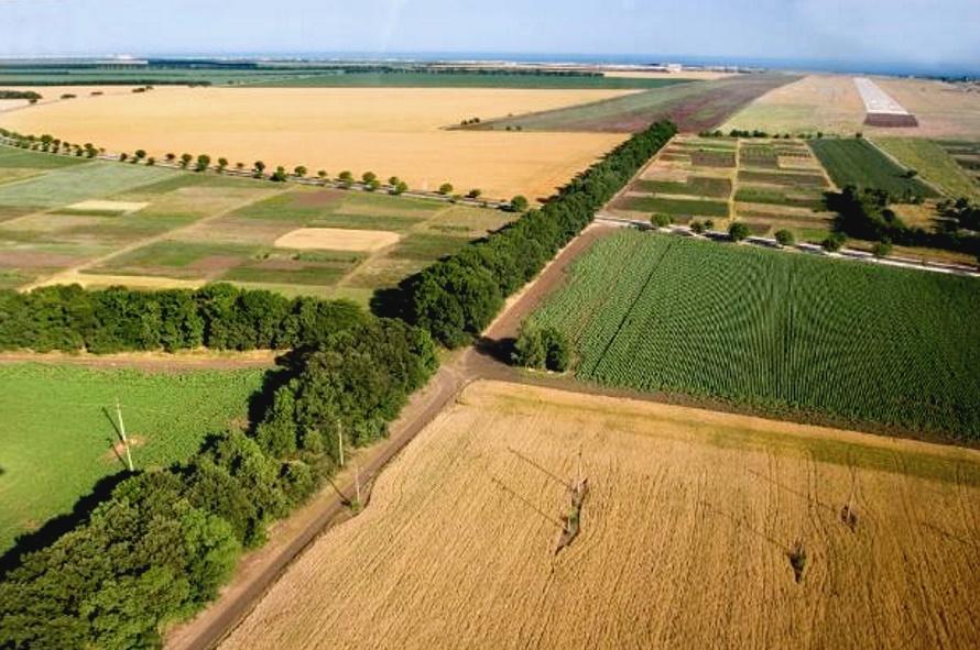 площадь земель сельскохозяйственного назначения