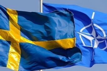 Флаги Швеции и НАТО. rtcg.me
