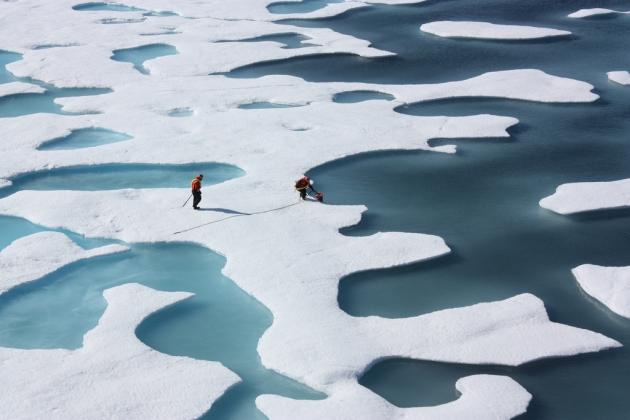Экс-премьер Финляндии: У Норвегии самая «умная» политика в Арктике