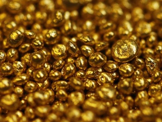 В СП Владивосток «зашли» золотодобытчики и переработчики японского анчоуса
