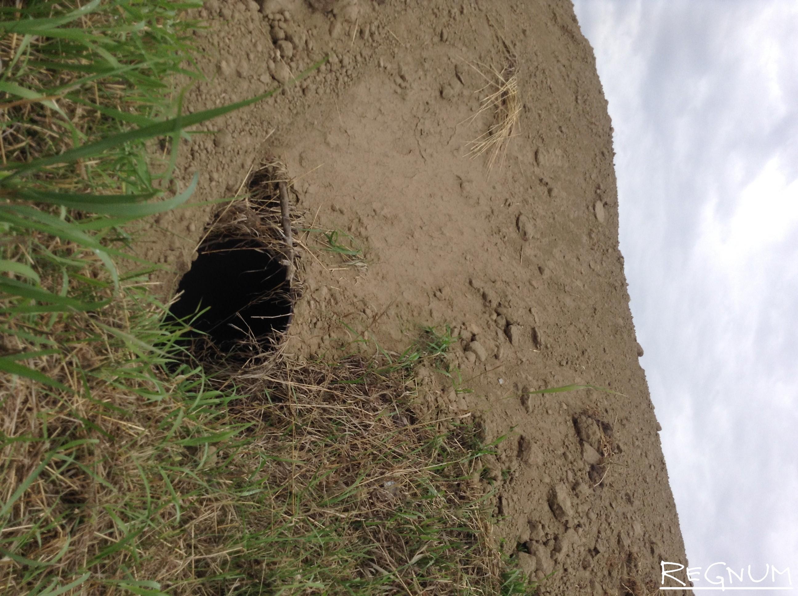 дневное время размыло дороги в алтайском крае батурово фото это