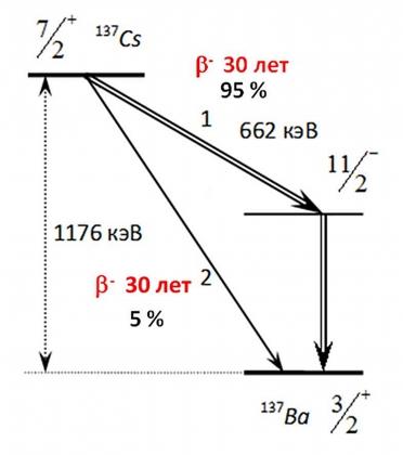 Рис. 4. Схема бета-распада изотопа цезия-137