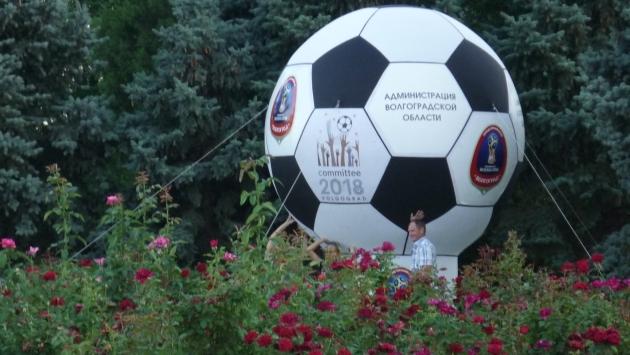Спортивный Волгоград укрепляет тело и дух