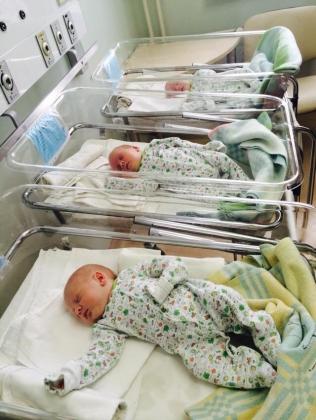 В Ярославской области семьям, где родились тройни, выплатят миллион рублей