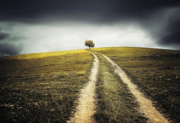 Неиспользуемые земли раздадут нижегородцам бесплатно