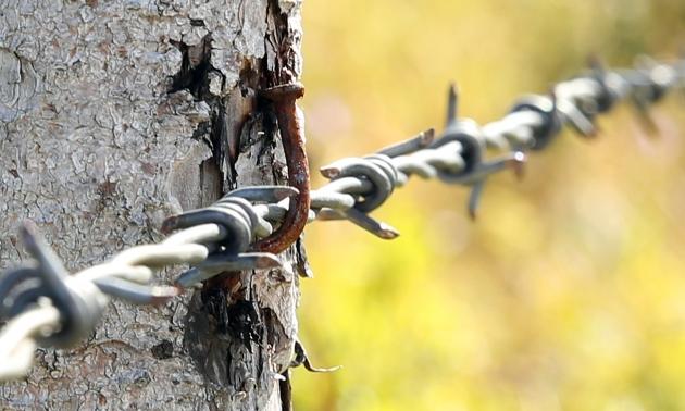 Польские СМИ: Россия укрепляет заграждения на границе с Польшей