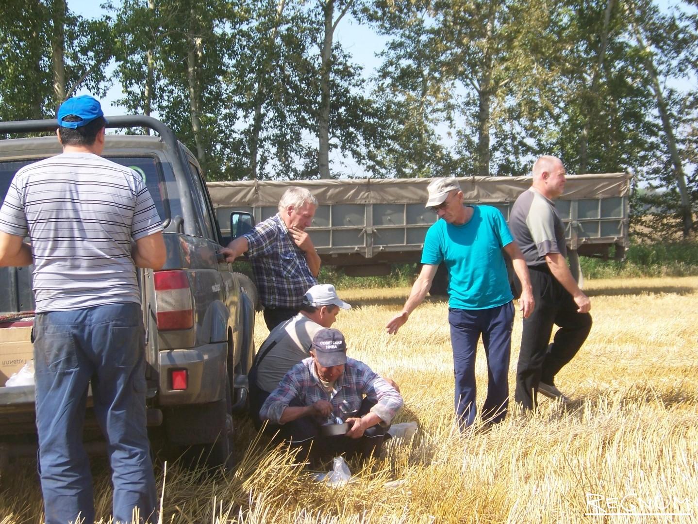 Обеденный перерыв в поле агрохолдинга «Гудвилл» в Советском районе Алтайского края