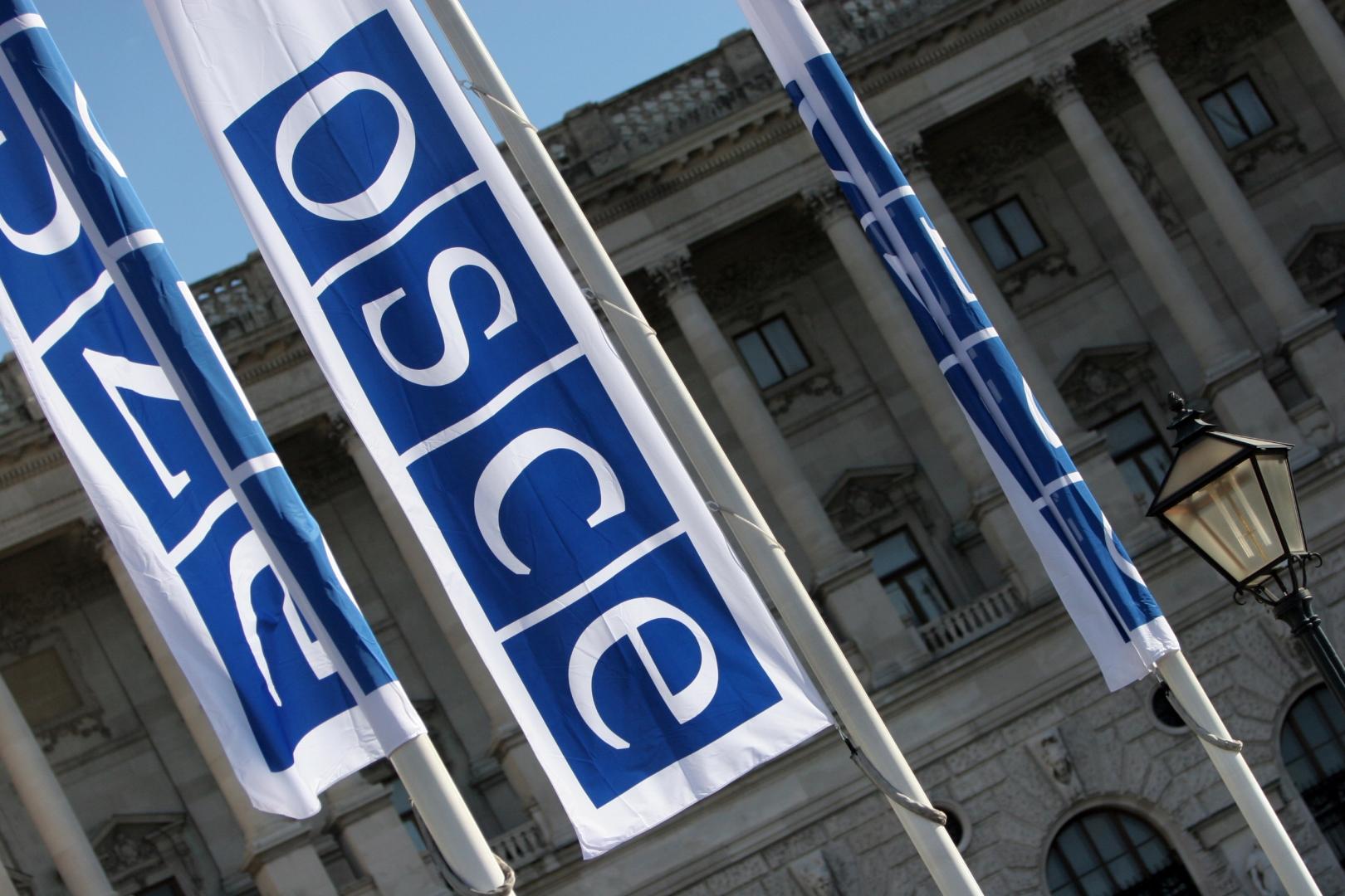 Россия передала ОБСЕ примеры действий Киева по срыву Минских соглашений