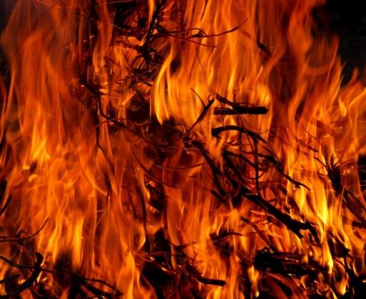 В Оренбуржье ищут виновников крупного природного пожара