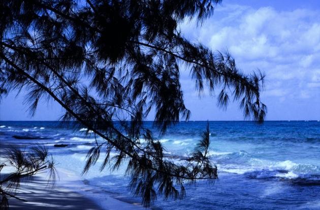 Багамские острова: новый международный офшорный скандал