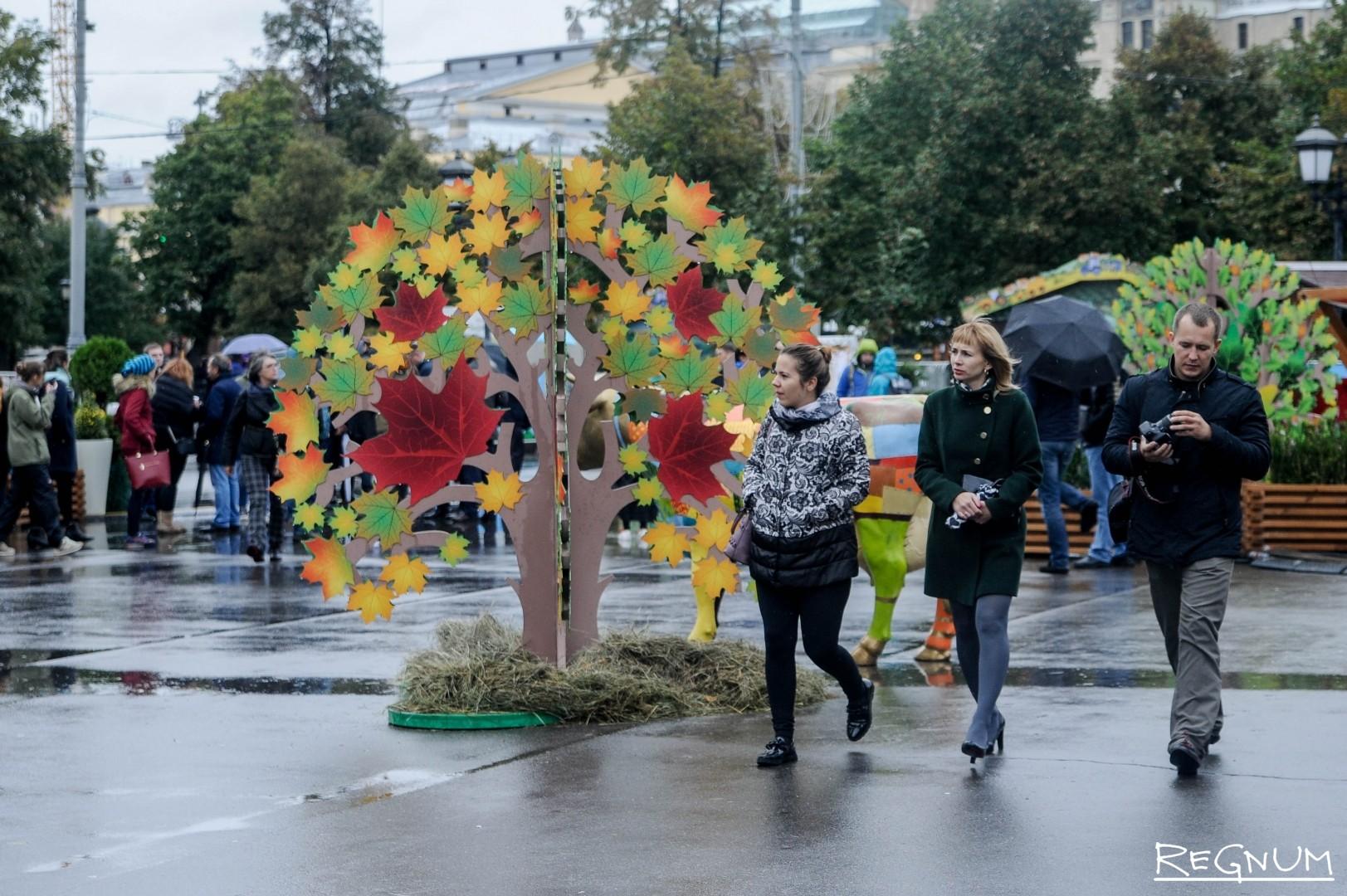 Фестиваль осенью