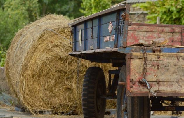 Якутяне требуют прекратить беспредел в сельском хозяйстве республики