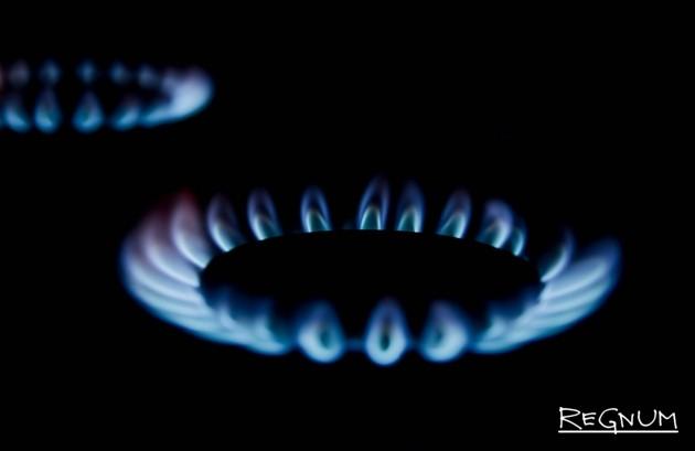 Госдума вводит штрафы за нарушения эксплуатации газовых котлов и плит