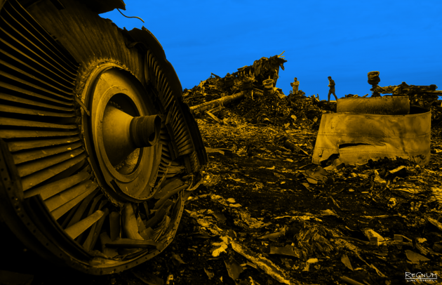 Voice370: Найденные на Мадагаскаре обломки могут принадлежать рейсу MH370
