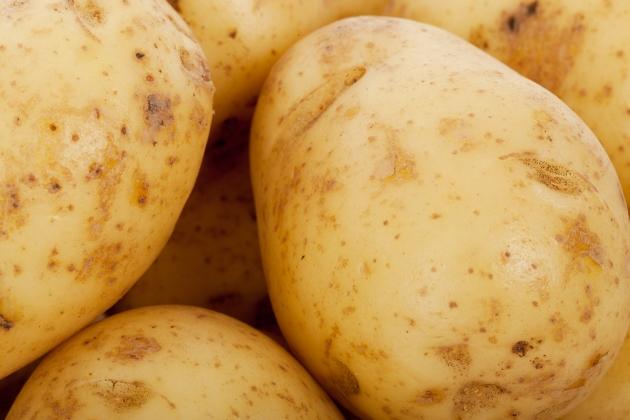 «Белорусский продовольственный оффшор» грозит России миллиардными убытками
