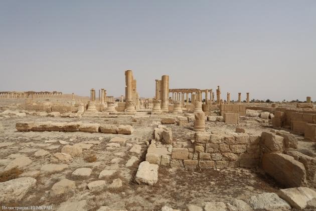Российские ученые надеются на минимальные разрушения в захваченной Пальмире