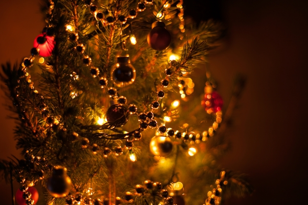 В Туле открылась губернаторская новогодняя елка