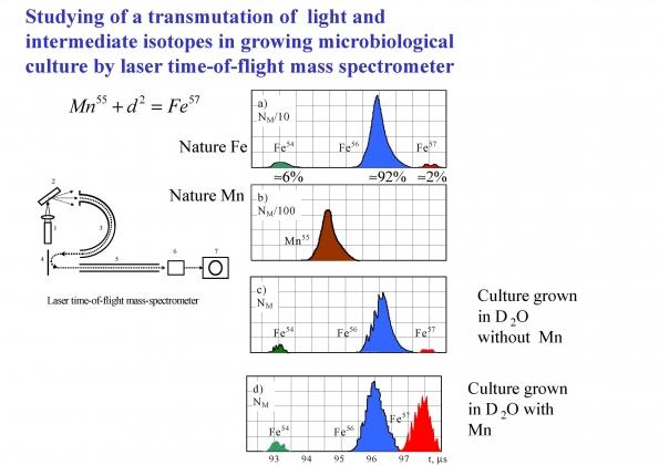 Рис. 8. Изменние пропорции различных изотопов железа в процессе преобразования марганца в железо-57