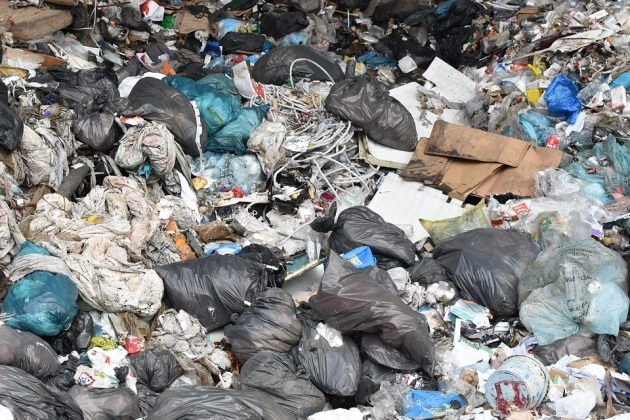 «Люди, как свиньи» — ответ мэрии Югорска на двухнедельный невывоз мусора