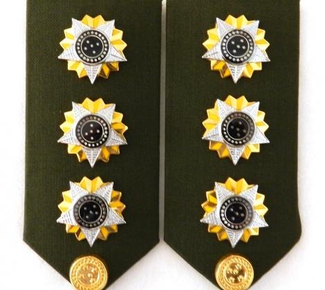 Погоны полковника бразильской армии
