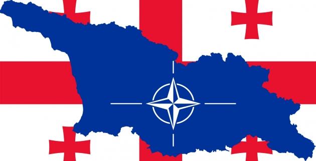 Фийон: Грузия и Украина в НАТО не вступят