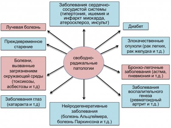 Рис. 1. Патологии, сопровождающиеся окислительным стрессом