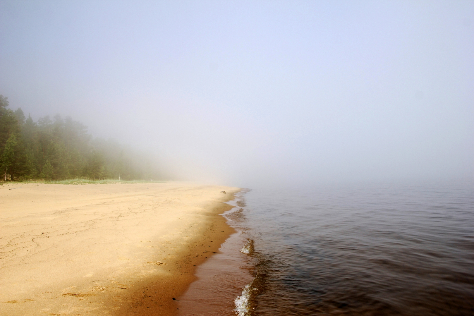 Туман над озером Regnum_picture_14866564561384136_normal