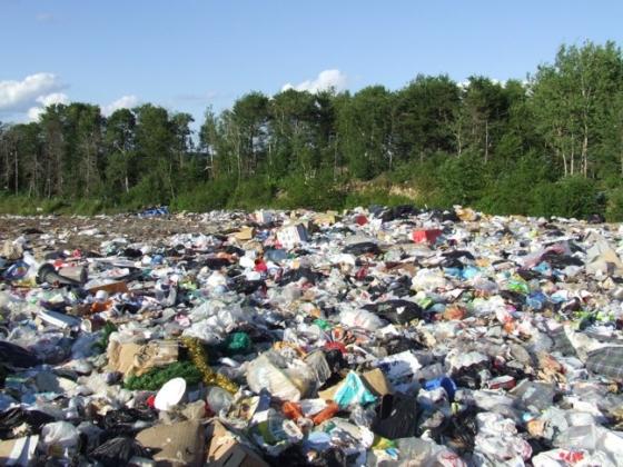 Общественники добились ликвидации двух свалок в Белгородской области