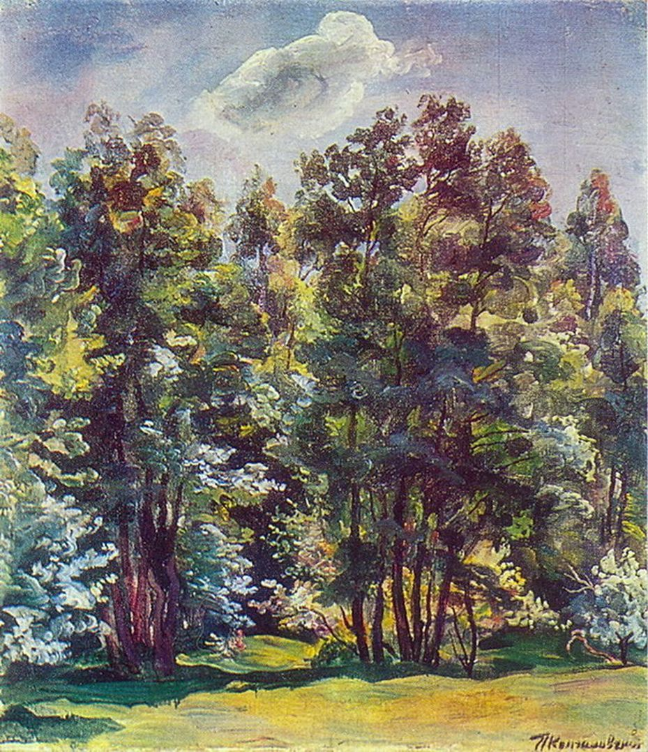 Петр Кончаловский. Ольха против солнца. 1932