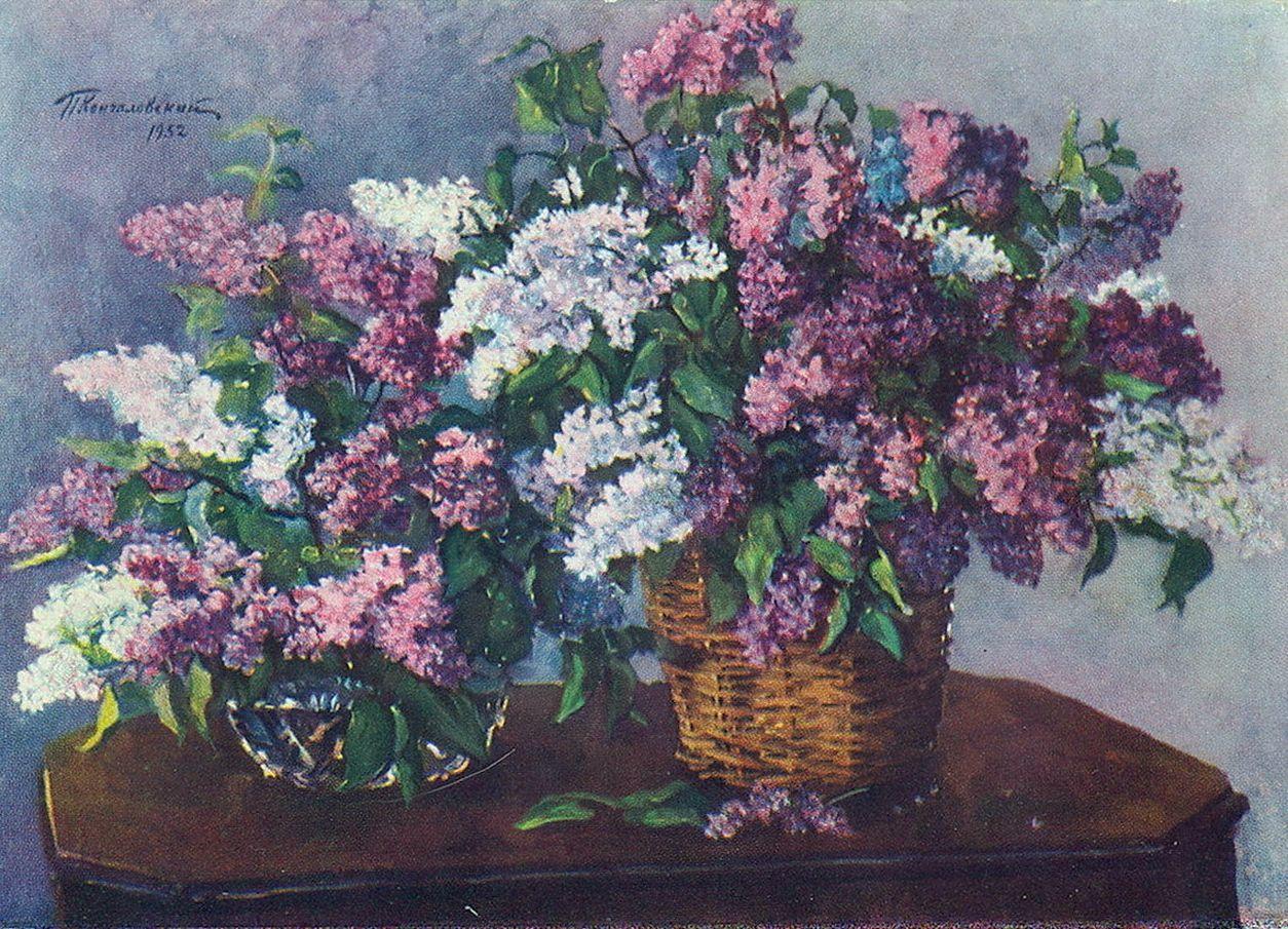 Петр Кончаловский. Сирень в плетенке. 1952