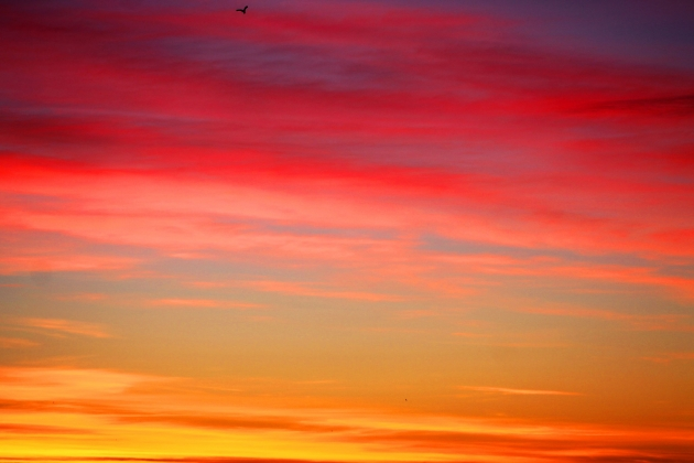 Поэма Санкт-Петербурга: Небо