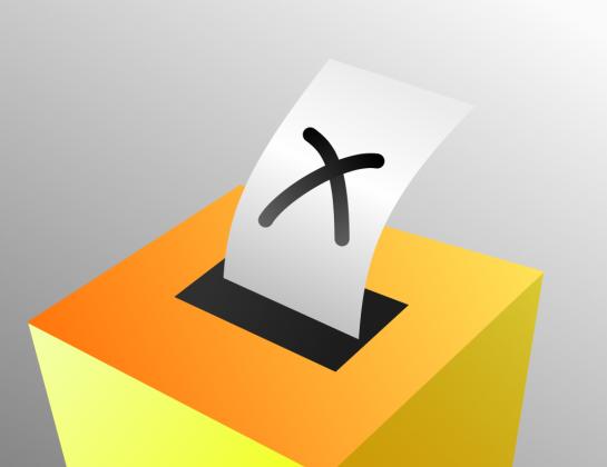 Свердловский Краснотурьинск всё-таки лишили прямых выборов мэра