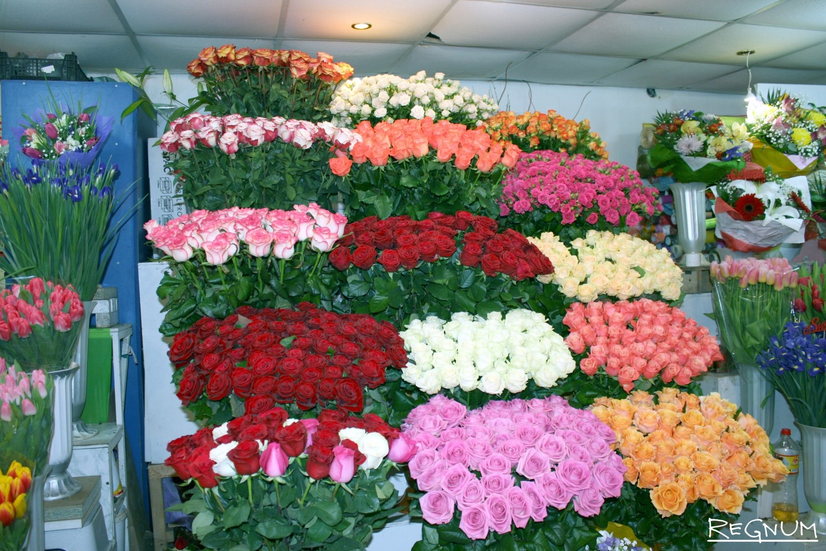Магазин цветов лучшие розы, где купить